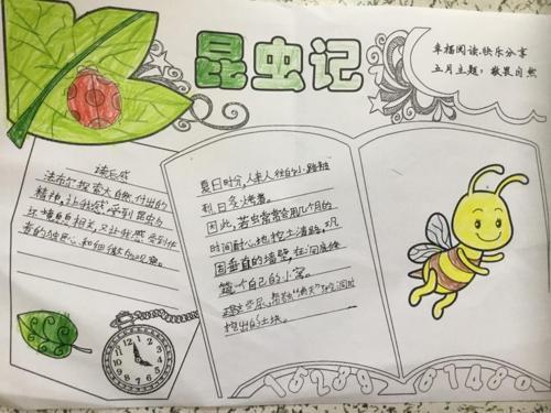 图片3_爱奇艺.jpg